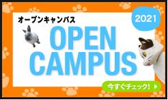 オープンキャンパス 2012 OPEN CAMPUS 今すぐチェック!